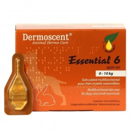 Dermoscent Essential 6 spot on 10 kg-ig 4 amp./doboz