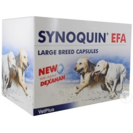 Synoquin EFA Tasty Large Breed tabletta 30db