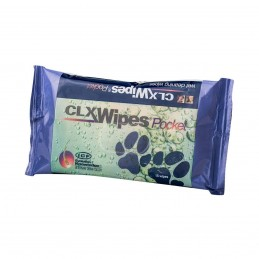 CLX Wipes Pocket 15db