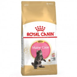 Royal Canin Maine Coon...