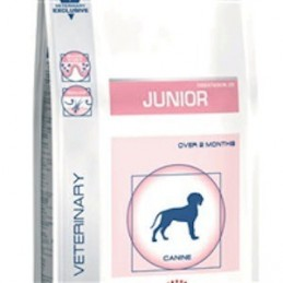 Royal Canin Pediatric Junior Dog 1kg