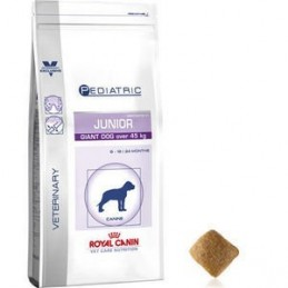 Royal Canin Pediatric Junior Giant Dog 14kg